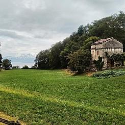 Il_primo_Trekking_del_Lago_Maggiore_06