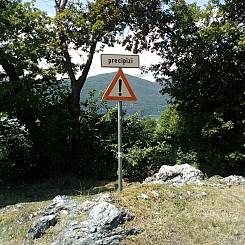 Il_primo_Trekking_del_Lago_Maggiore_10