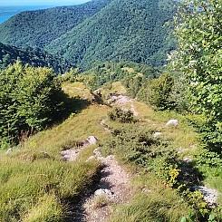 Il_primo_Trekking_del_Lago_Maggiore_12