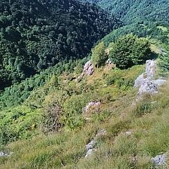 Il_primo_Trekking_del_Lago_Maggiore_16