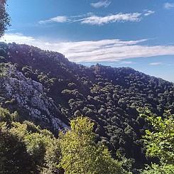 Il_primo_Trekking_del_Lago_Maggiore_19