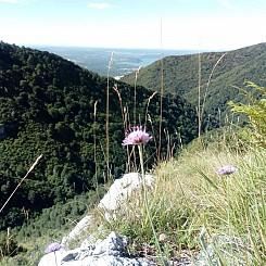 Il_primo_Trekking_del_Lago_Maggiore_23